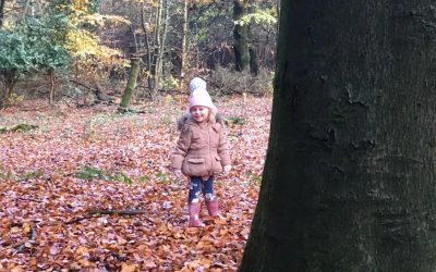 Leaves, Puddles, Dens and Autumn Colours